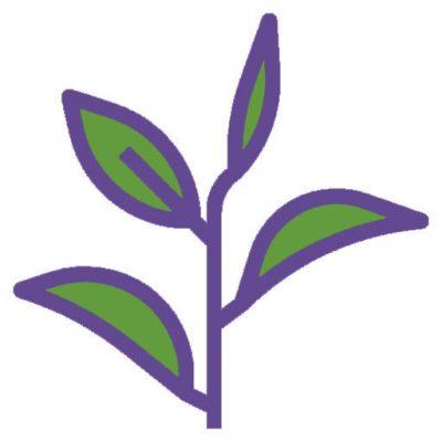 натурални аромати - амалина